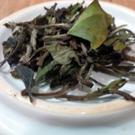 Absinthe Frost from Herbal Infusions