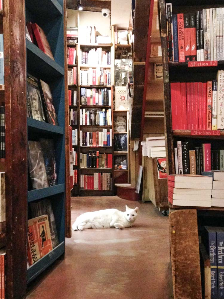 SHAKESPEARE & CO EVENT