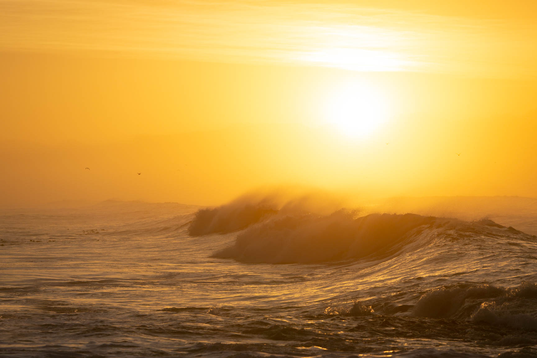 Sunrise over False Bay with waves and birds
