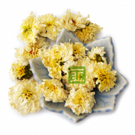 Huangshan Gongju (Tribute Chrysanthemum) from The Tea Forest
