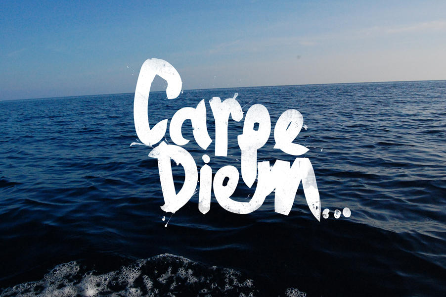 an analysis of carpe diem Carpe diem should attract parents looking for a high-quality school with small class sizes, a safe place for special-education students, and a sense of community across the middle and high school grades, forner says.