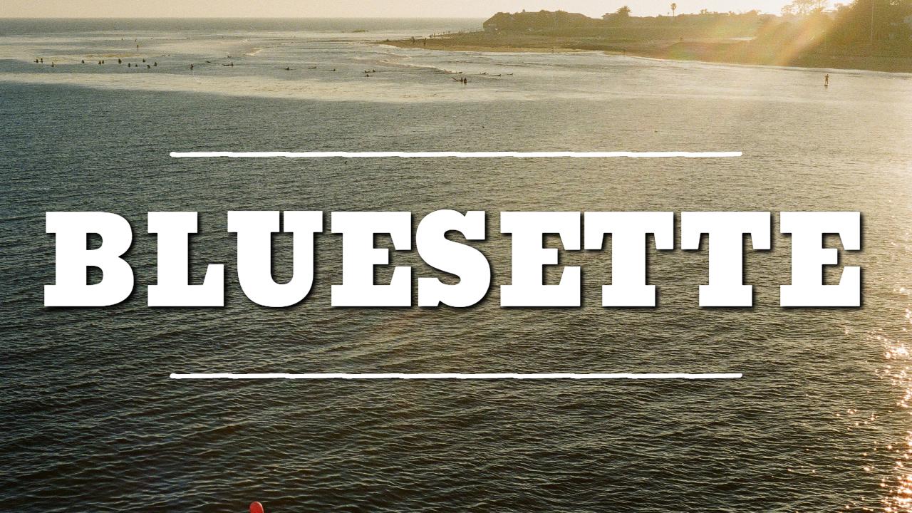 Bluesette - thumbnail
