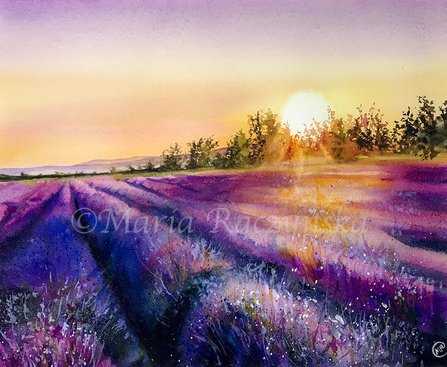 Picture Of Maria Raczynska Lavender Fields Painting