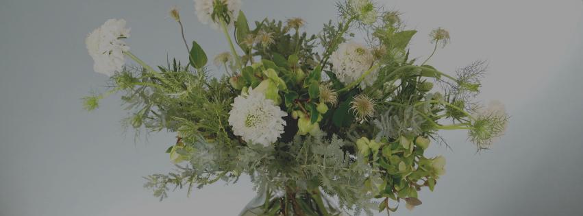 Flower Fridays: Textured Winter White