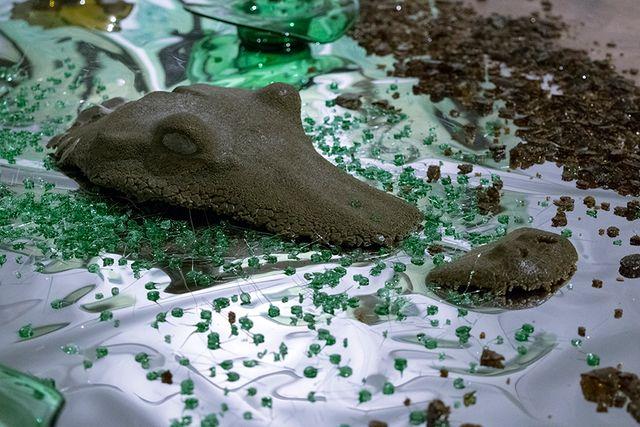 image: Alligator Head, olive- Bottle Glass