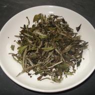Pai Mu Tan from The Amber Rose Tea Company