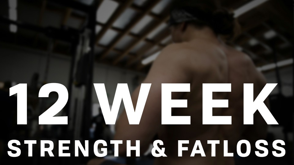 12 Week Strength and Fat Loss