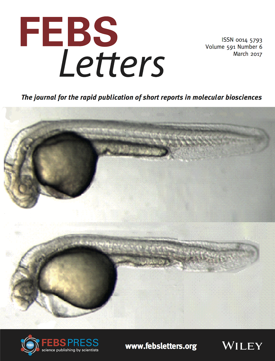 Template for submissions to FEBS Letters - Overleaf, Online LaTeX Editor