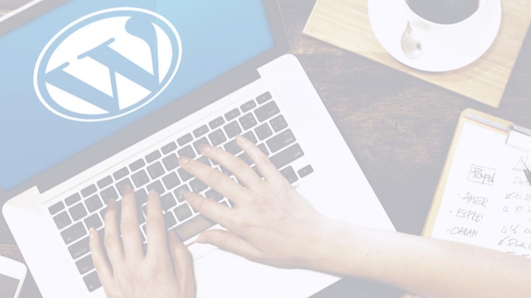 Website in Week: Launch Your WordPress Website with AnitaM