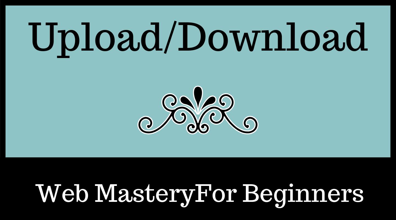 Uploads/Downloads