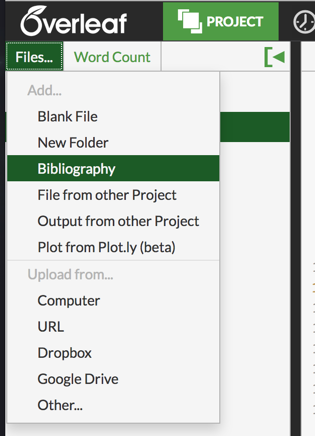 Overleaf project pane