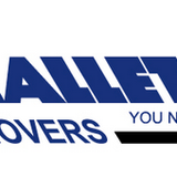 Hallett and Sons Expert Movers Inc. image