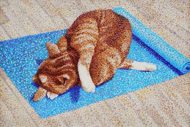 "image: ""Yoga Cat (crumpled kitty)"""