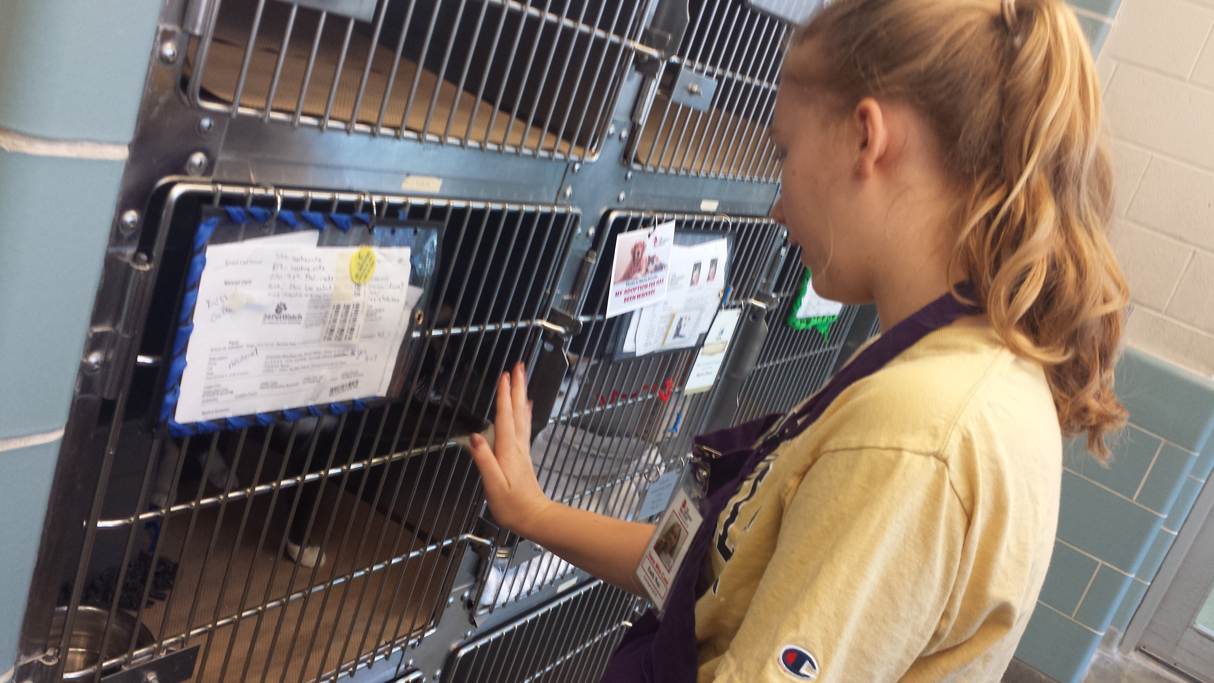 Winter 2019 After School Advocates: Animal Behavior & Training