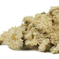 chrysanthemum flowers from Mountain Rose Herbs