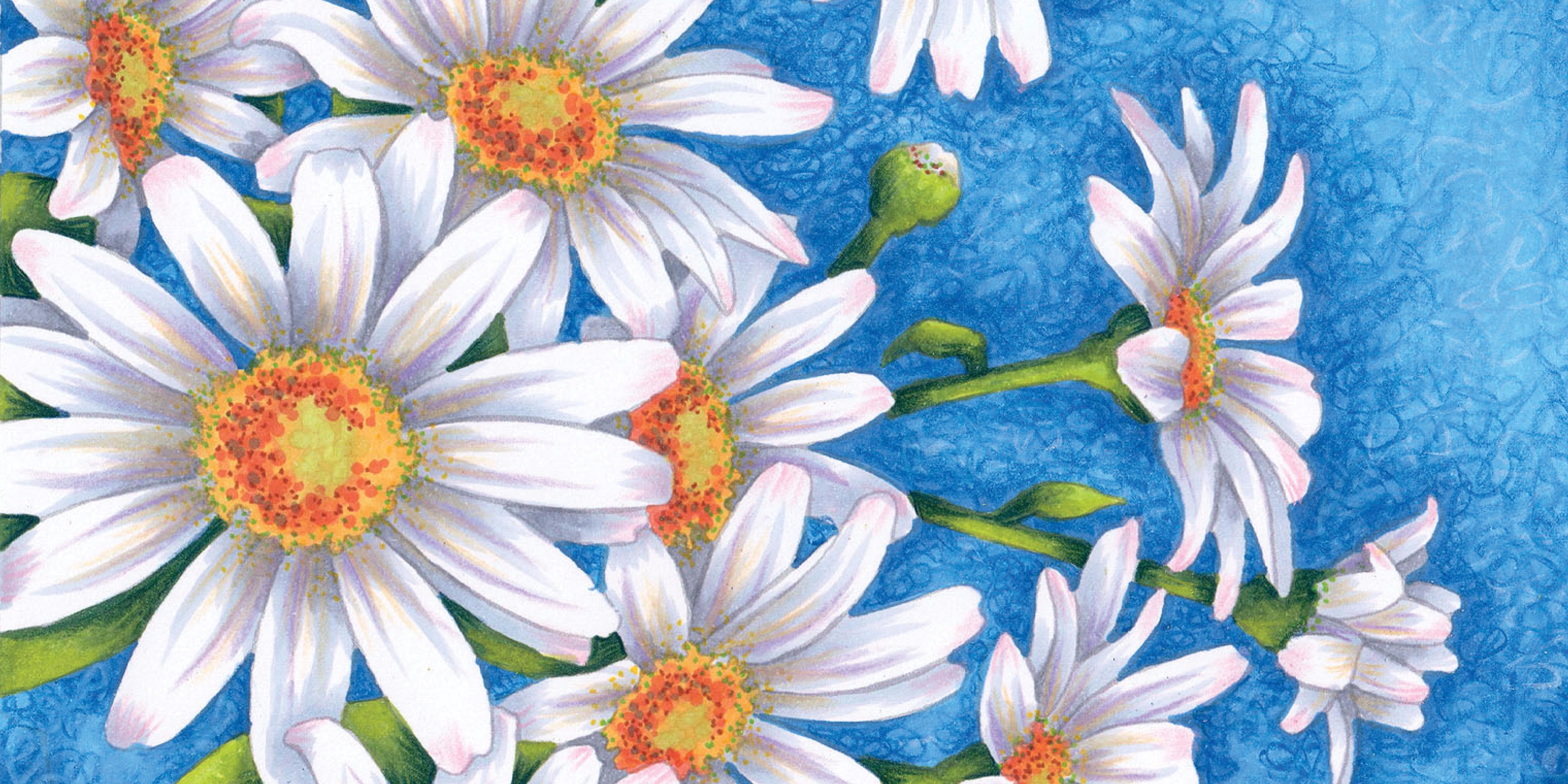 Marker Painting Basics Oopsie Daisy Vanilla Arts Company
