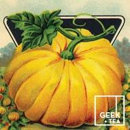 Pumpkin Juice Chai from Geek + Tea