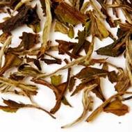 Bai Mu Dan from Shanti Tea