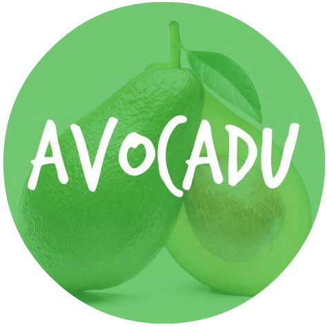our six-figure blog Avocadu