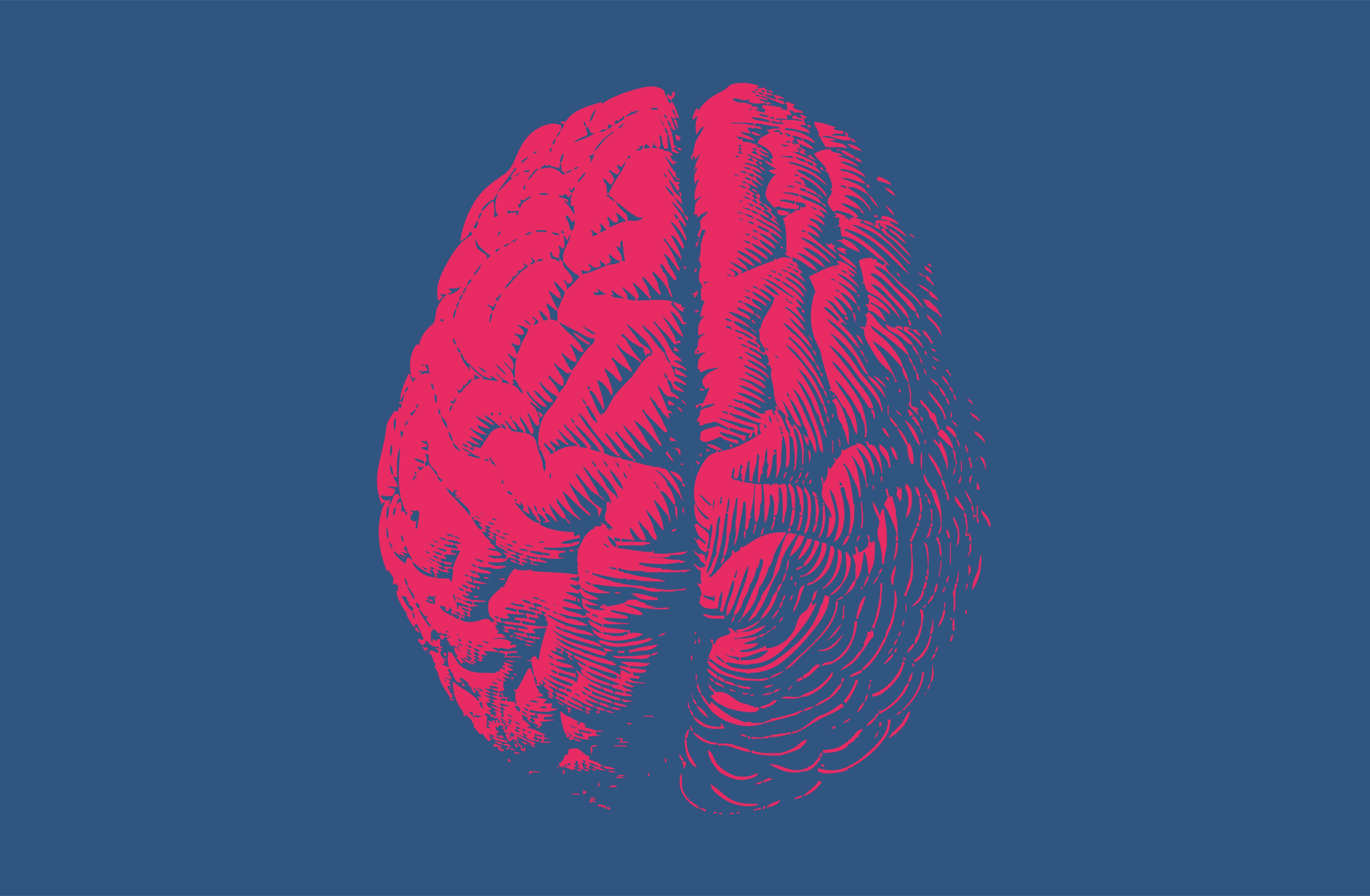 red brain on blue background