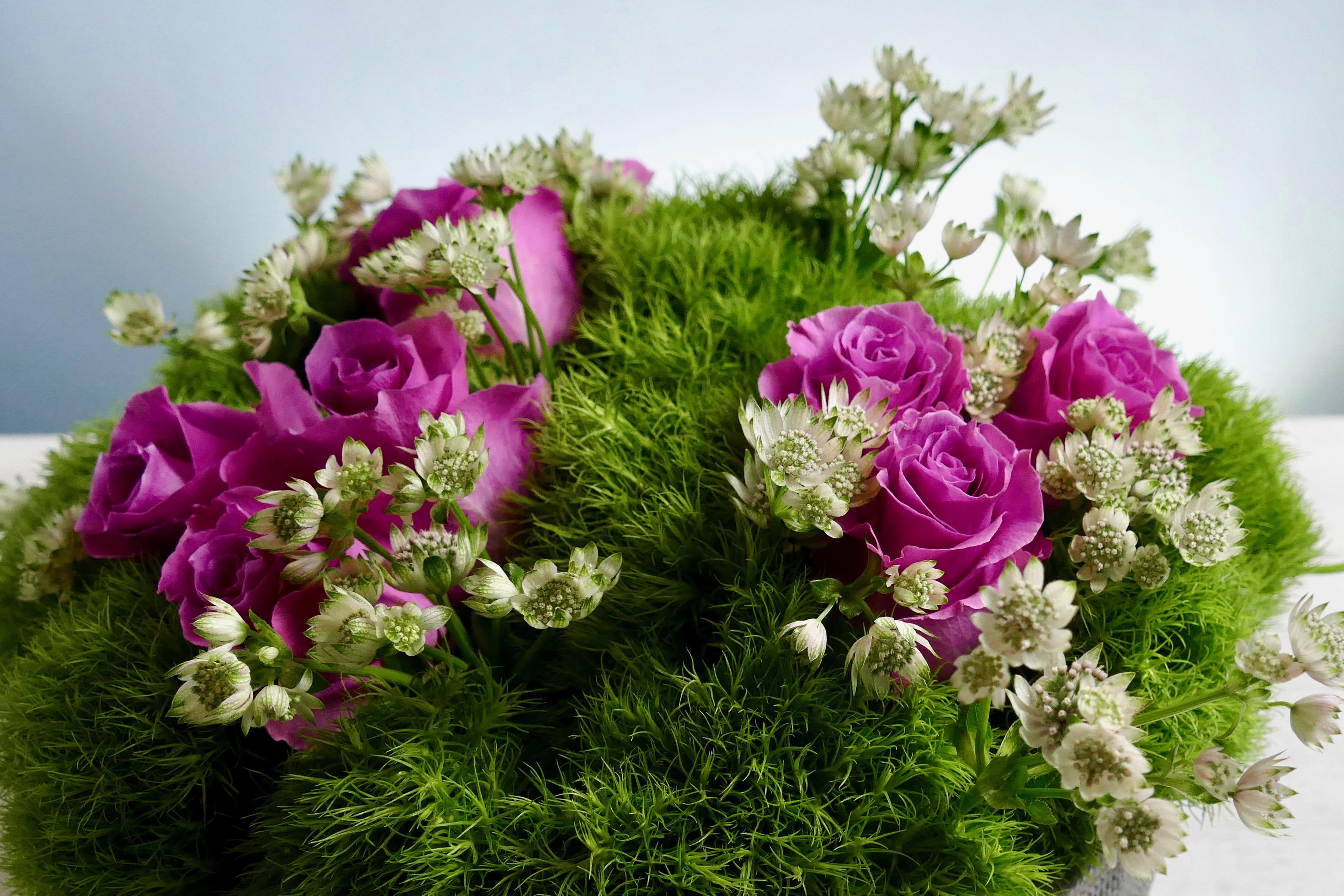 Zen Florals