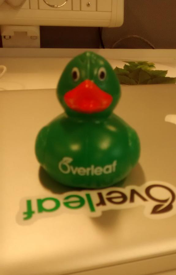 Overleaf Rubber Duck 2015