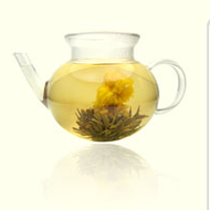 Golden Jasmine from t Leaf T
