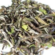 Darjeeling, Himalayan Mist from Darjeeling Tea Exclusive