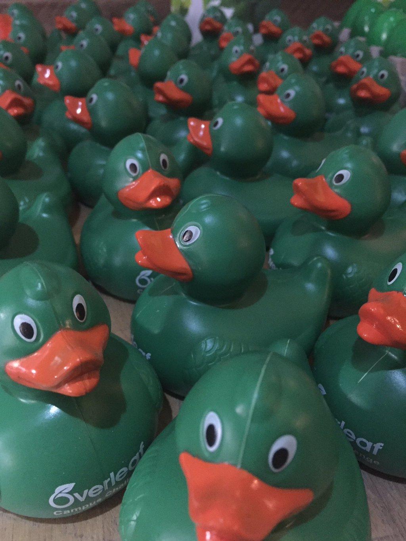 Overleaf Campus Challenge Ducks!