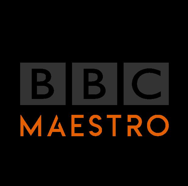Maestro Media Ltd. Company Logo