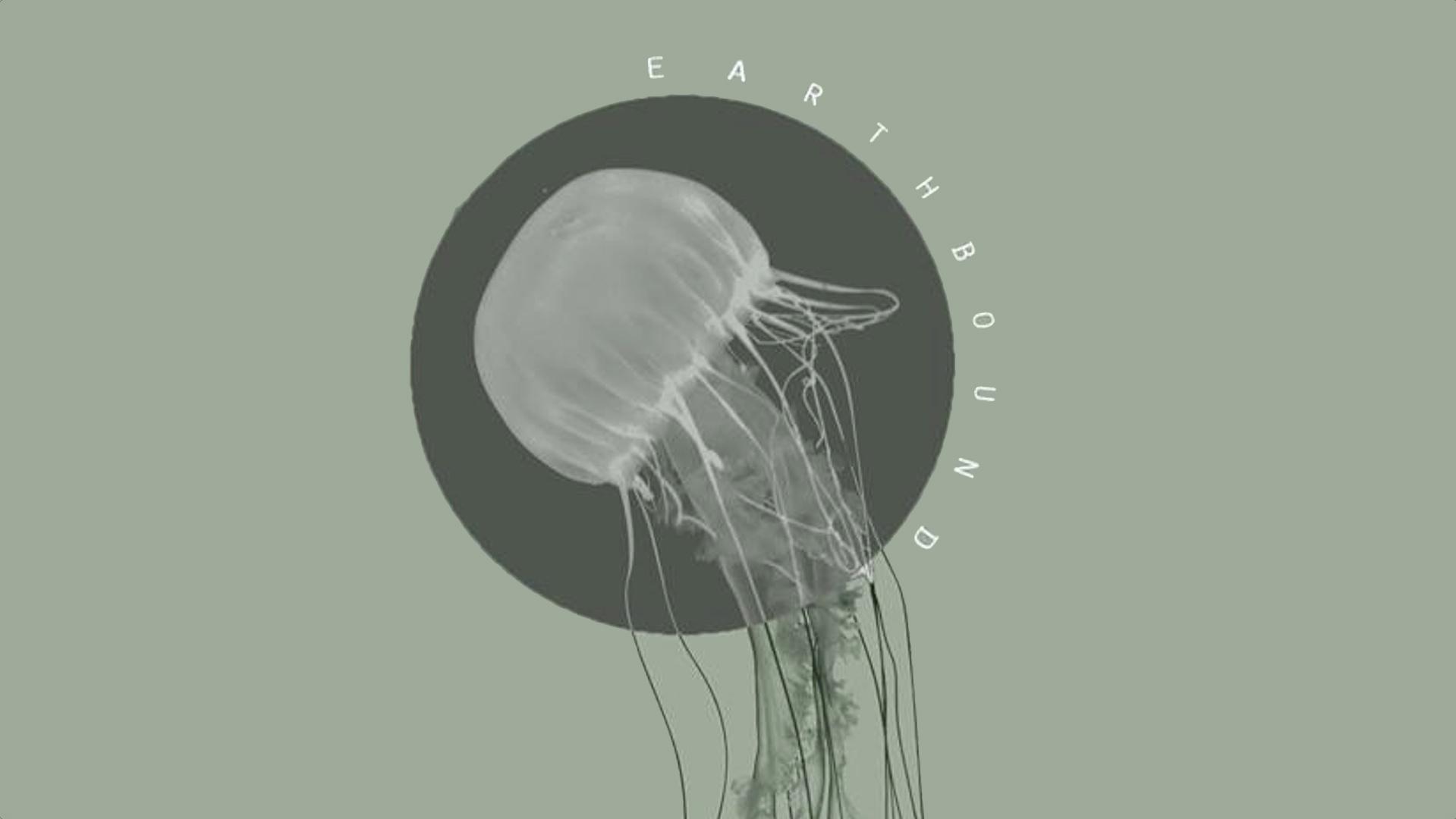 Earthbound: An Experimental Music Showcase