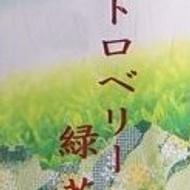 Strawberry Sencha (Ichigo Cha) from shizuokatea.com