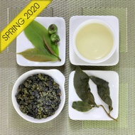 Alishan Qing Xin Spring Oolong Tea, Lot 917 from Taiwan Tea Crafts