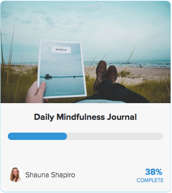 Daily mindfulness journal program