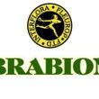Բրաբիոն ծաղկի խանութ սրահ – Brabion