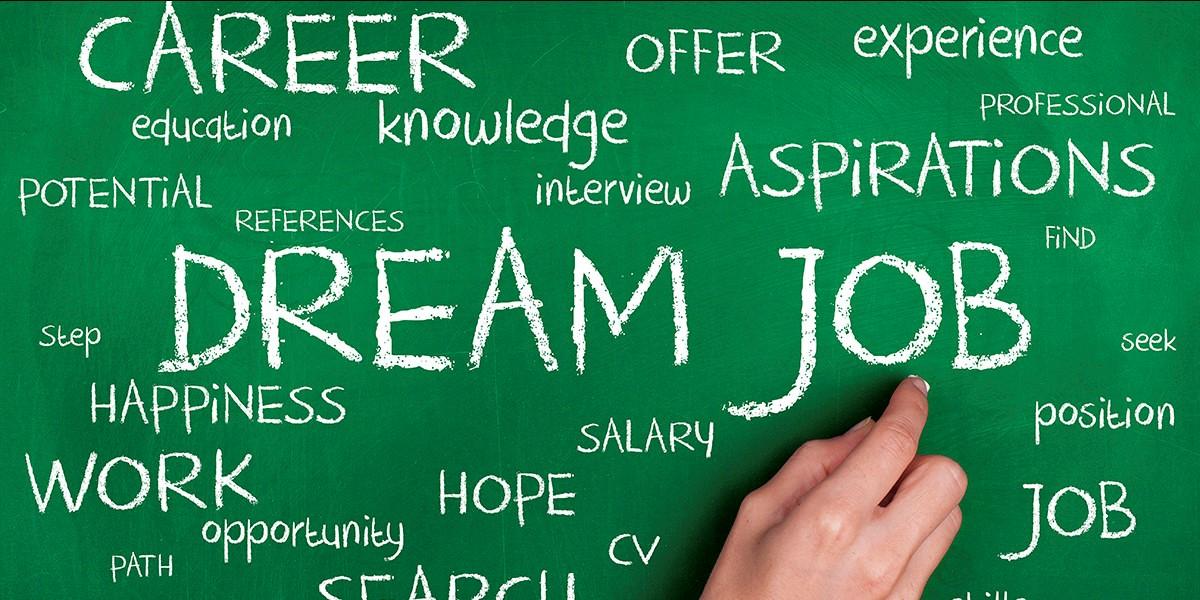 Career Exploration -Pitstop1