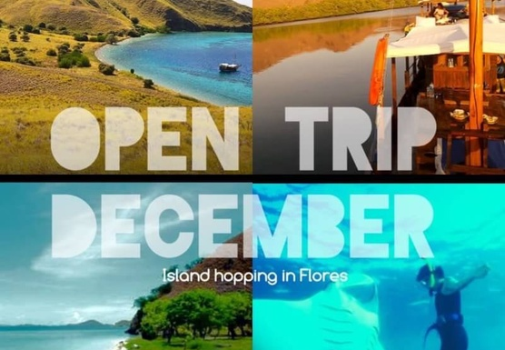 Open Trip Island Hopping Komodo Islands December 2016