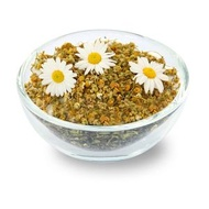 Camomile from Tea Story