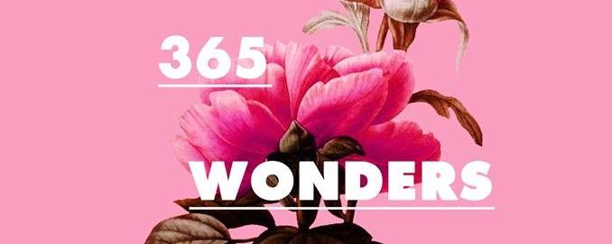 365 Wonders 2016 Planner Launch Event