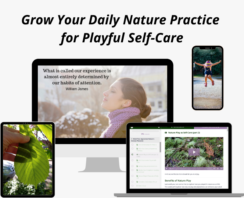 A Daily Nature Practice: Playful Self-Care for Healthcare Professionals