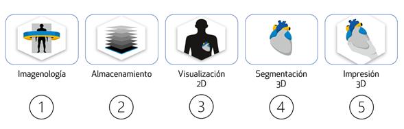Workflow para modelos anatómicos