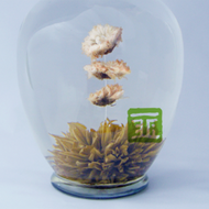 Chrysanthemum from The Tea Forest