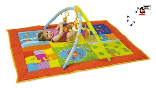 Taf Toys 2 in 1 gym