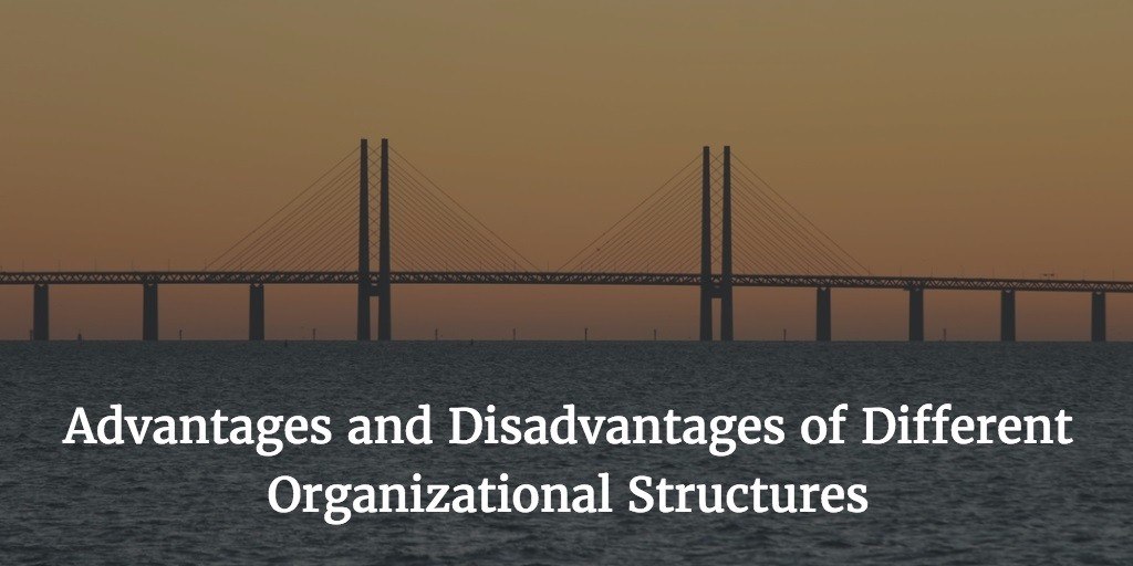 advantages and disadvantages of organic structure