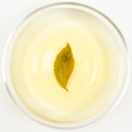 Master Four Seasons Organic Oolong Tea - Spring 2015 from Taiwan Sourcing