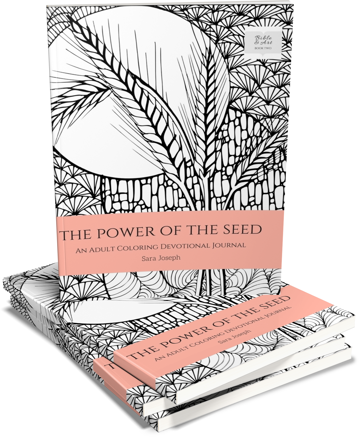 The Power of the Seed: An Adult Coloring Devotional Journal