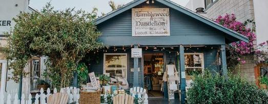 Tumbleweed & Dandelion cover image | Los Angeles | Travelshopa