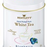 BLUEBERRY FLAVORED 100% PURE WHITE TEA from Bentley's