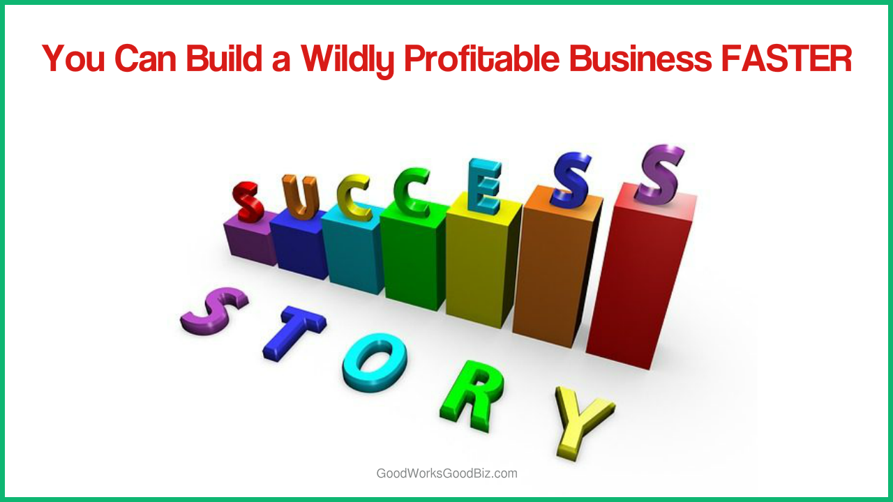 Rapid Online Marketing Profits: You Can Build a Wildly Profitable Business Faster