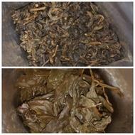 1989 Shan Lin Xi from Tea Urchin